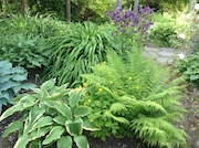 Bowdens Garden